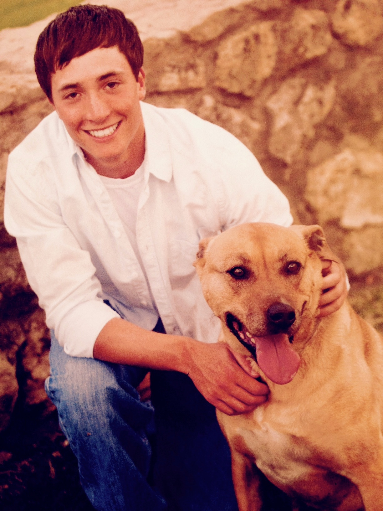 Use Of Cialis In Dogs